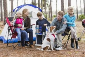 Camping With Dogs: Tips for Ensuring Your Pet's Safety and Comfort
