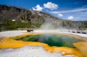 Yellowstone Backcountry Camping: A Quick Introduction